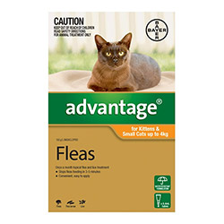 Flea Amp Tick Control Prevention And Treatment For Cats