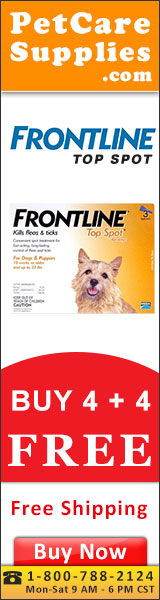 Buy 4, Get 4 Doses Free + 12% Extra Discount & Free Shipping across USA. Frontline Top Spot is a full proof topical treatment that kills fleas within 24 hours and remains effective for four continuous weeks.